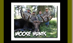 Guided Moose Hunting Trips in Wyoming