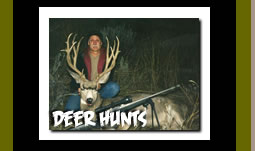 Hunt Big Game Deer in Wyoming Guided Hunting Vacations and Trips