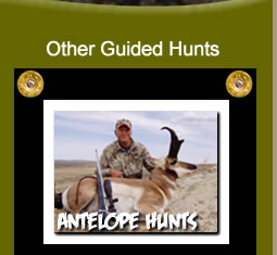 Antelope Hunting Trips in Wyoming