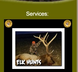 Elk Hunting Trips in Wyoming